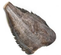 Палтус б/г с/м (3-5 кг.)
