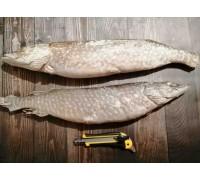 Щука якутская с/м (2-5 кг.)